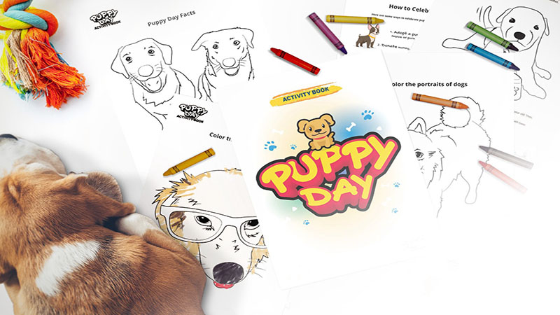 Puppy Day Activities