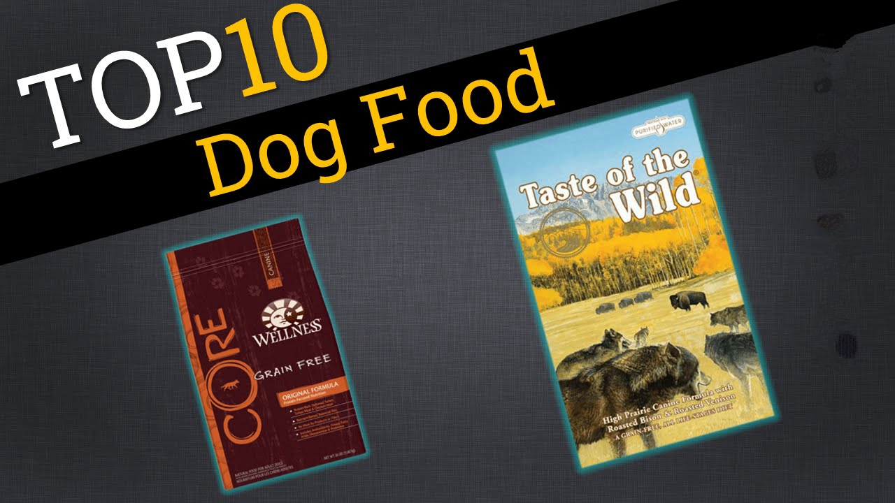 What Are The Top 10 Dog Foods